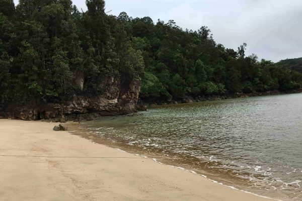 Bako National Park Pulau Lakei 1